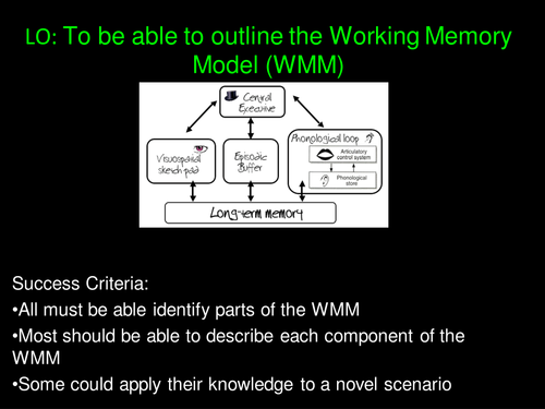 Working Memory Model (Outline and Application) Psychology