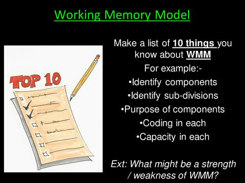 Evaluation Working Memory Model (WMM) - Psychology