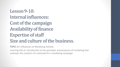 Unit 2 Developing a Marketing Campaign Lesson 9-10 Internal Influences