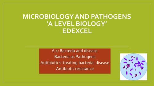 Edexcel A level Biology:Bacteria as pathogens