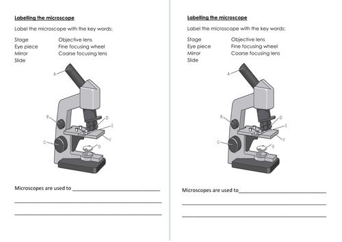 New AQA biology microscope lesson