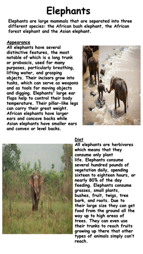Elephant Information Texts