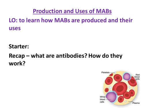 AQA Biology GCSE New Specification - Monoclonal Antibodies