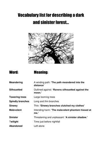 Descriptive Writing: Journey through the dark forest: 1-4 lesson scheme and image prompts