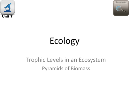 AQA Biology 4.7 Ecology – L15 Pyramids of Biomass