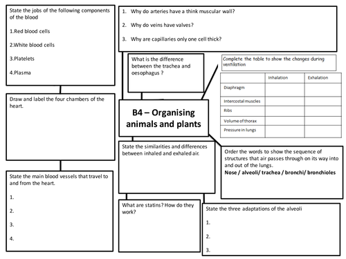 Gcse And Igcse Biology Revision Resources Tes