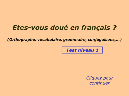 FRENCH GRAMMAR QUIZ FOR A LEVEL FRENCH