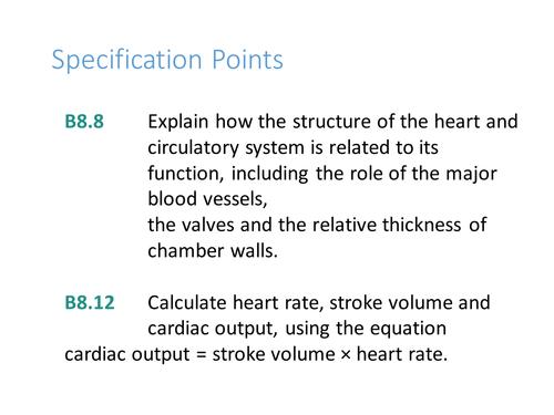 CB8c The heart Edexcel GCSE 9-1
