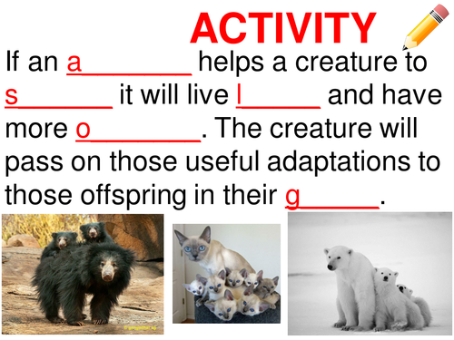 Adaptation, habitat and adaptations and inherited variation, survival. KS3 Complete lesson.