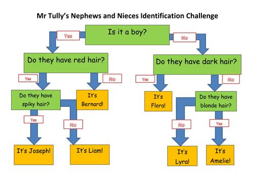 Classification Chart/Tree