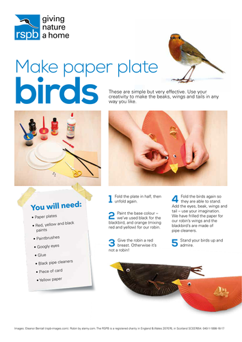 Early Years Big Schools' Birdwatch lesson and supporting resources Welsh version