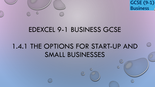 1.4.1 The options for start-up and small businesses