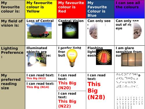 Visual Impairment Profile/Passport