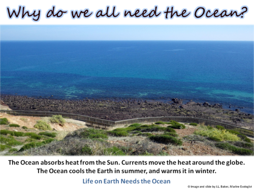 Oceans Education Poster 2