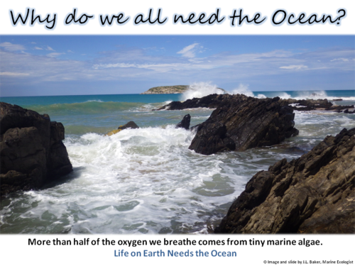 Oceans Education Poster 1
