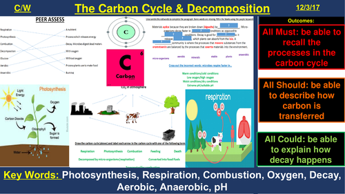 The Carbon Cycle & Decomposition | AQA B2 4.7 | New Spec 9-1 (2018)