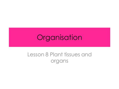 Plant cell Organisation - Organisation (New AQA Spec)