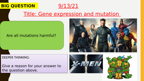 AQA new specification-Gene expression and mutation-B13.6
