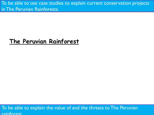 Tropical  Rainforest. Peru Case Study