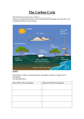 GCSE Combined Science Biology B7 ECOLOGY ppt (Foundation)