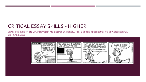 Higher Critical Essay Skills
