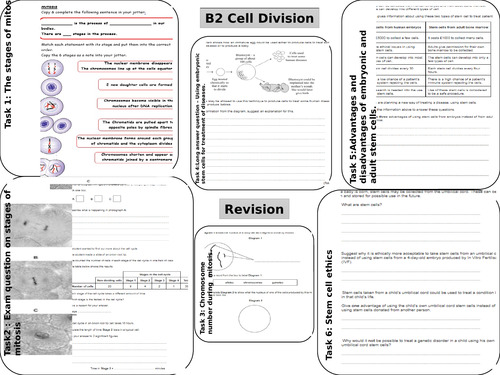 NEW AQA B2 CELL DIVISION REVISION by kirstylheath