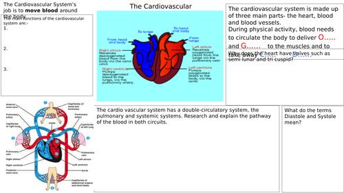 AQA GCSE PE 2016 GRADES 9-1 cardiovascular system ...