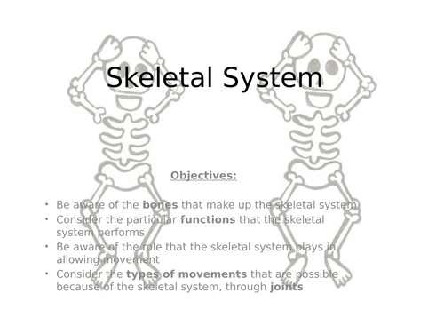 Skeletal System Powerpoint And Booklet By Easton10 Teaching
