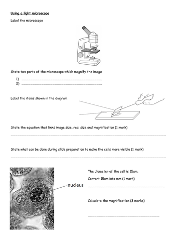 Paper 1 Edexcel Combined Science Core practical Revision