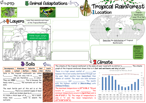 NEW 9-1 Living World (Tropical Rainforest) Revision Sheets