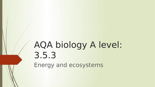AQA A level biology energy transfer