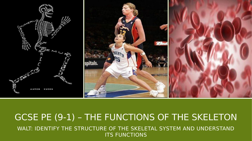 AQA GCSE PE (9-1) The Functions of the Skeleton Lesson Resources