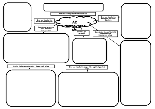 A2 Biology Photosynthesis Mind Map/Revision Mat by