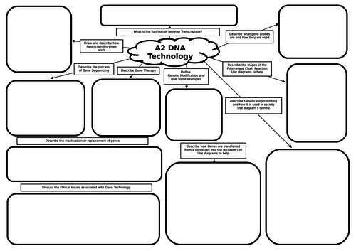 A2 Biology Gene Technology Mind Map/Revision Mat by