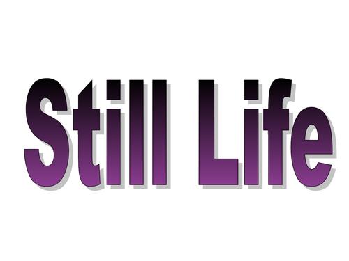 Still Life Art Presentation