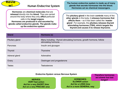 Homeostasis & Response Topic 5, Part 2 Revision Card Activities for New AQA Biology GCSE