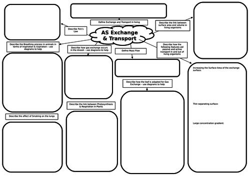 AS Biology Principles of Exchange & Transport Revision Mat