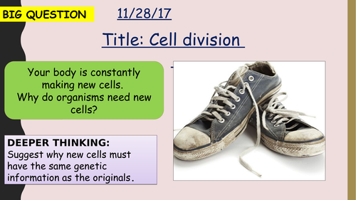 AQA new specification-Cell division (mitosis)-B2.1