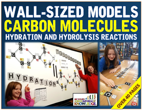 Wall-Sized Models - Carbon Molecules - Gllycerol and Triglycerides