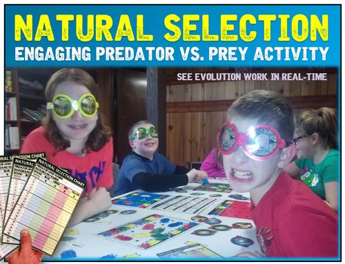Natural Selection Predator vs. Prey Activity