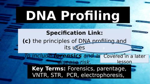 OCR Biology 6.1.3 DNA Profiling