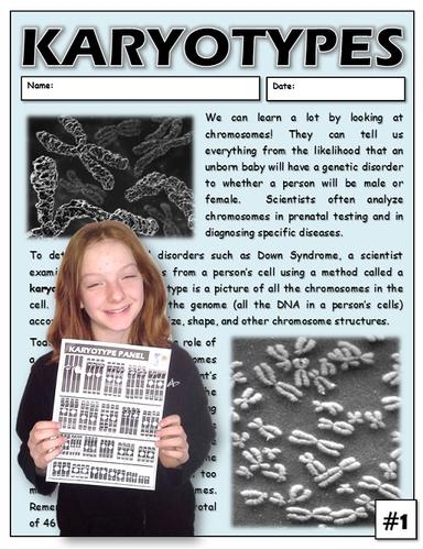 Karyotypes Interactive Lab