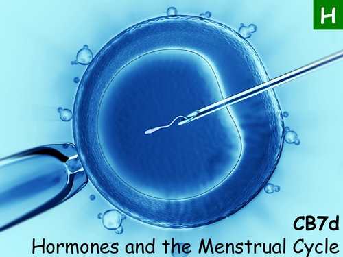 Edexcel CB7d Hormones and the Menstrual Cycle