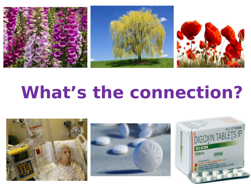 Developing Medicines / drugs AQA