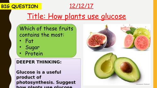 AQA new specification-How plants use glucose-B8.3