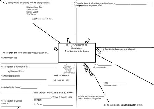 OCR GCSE PE Recall Wheel - Cardiovascular System