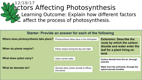 B2.3 AQA Plants and Photosynthesis - Factors Affecting Photosynthesis