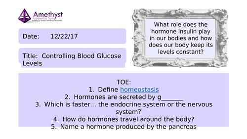 The Control of Blood Glucose Levels - AQA (9-1)
