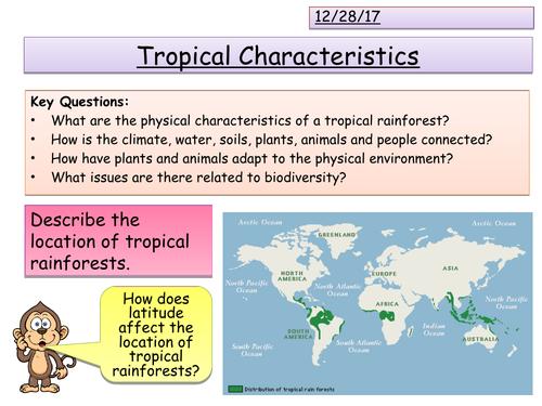 Tropical Rainforests Characteristics