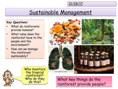 Sustainable Rainforest Management